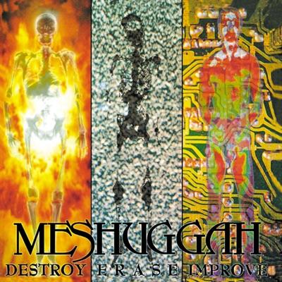 Destroy Erase Improve (Reloaded) - Meshuggah