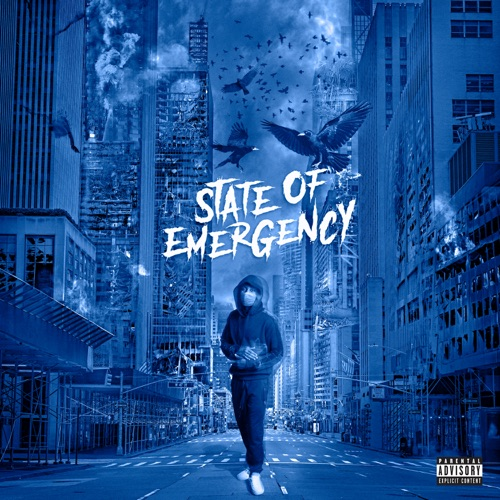 Lil Tjay – State of Emergency [iTunes Plus AAC M4A]