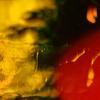 Vesce - Broken artwork