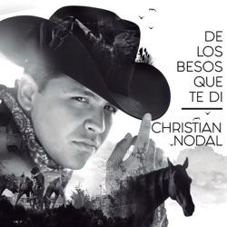 View album De Los Besos Que Te Di - Single