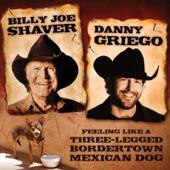 Billy Joe Shaver - Feeling Like a Three-Legged BorderTown Mexican Dog
