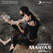 Maryan (Original Motion Picture Soundtrack) - A. R. Rahman - A. R. Rahman
