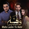 Wafa Lazim to Nahi Single