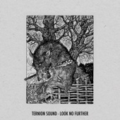 Ternion Sound - Look No Further