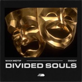Divided Souls artwork