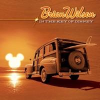 カバーアーティスト|Brian Wilson