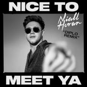 Nice to Meet Ya (Diplo Remix) - Niall Horan & Diplo