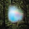 Trey Anastasio - Ghosts of the Forest  artwork