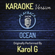 Ocean (Originally Performed By Karol G) [Karaoke Version] - Playback Show
