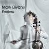 Mark Eliyahu - Endless artwork
