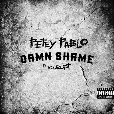 Damn Shame (feat. Kurupt) - Single - Petey Pablo