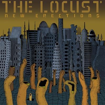 New Erections - The Locust