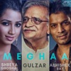 Meghaa feat Gulzar Single