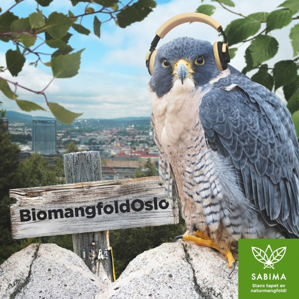 Biomangfold Oslo