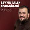 Seyyid Taleh Boradigahi - Ey Sevgili artwork