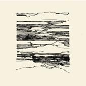 Marja Ahti - Fluctuating Streams