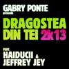 Dragostea Din Tei 2k13 (feat. Haiducii & Jeffrey Jey) - Single