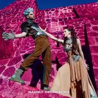 Swing Mahmut Orhan Remix Single Sofi Tukker Musik