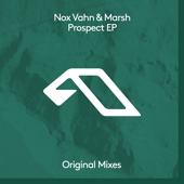 Prospect (Extended Mix)