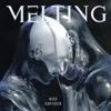 Nico Cartosio - Melting artwork