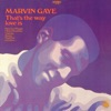 That's the Way Love Is, Marvin Gaye