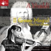 ヴァイオリン協奏曲ホ長調RV269 「春」 I. Allegro artwork