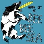 Bee Bee Sea - Gonna Get Me