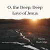 O, The Deep, Deep Love of Jesus - Single