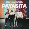 Payasita - Single