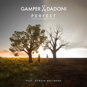 GAMPER & DADONI - Perfect (For Somebody Else) [feat. Dewain Whitmore]