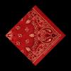 Aaron Watson - Red Bandana  artwork