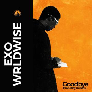 Exowrldwise - Goodbye