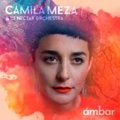 Camila Meza - Cucurrucucu Paloma