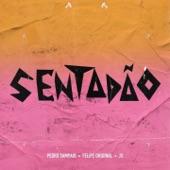 Pedro Sampaio - Sentadao