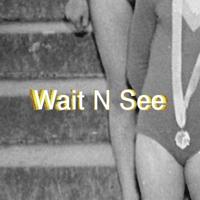 Perera Elsewhere - Wait N See artwork