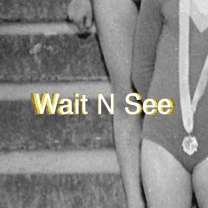 Wait N See - Single