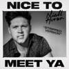 Nice to Meet Ya Stripped Version Single