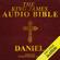 Daniel (Unabridged) - M-Y Books Ltd
