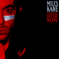 Can You See Me Now-Miles Kane