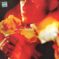 Never - Single Mp3 Download