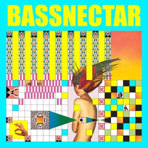 Bassnectar - You & Me feat. W. Darling