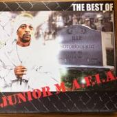 Junior M.A.F.I.A. - Get Money