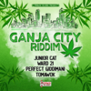 Various Artists - Ganja City Riddim - EP bild