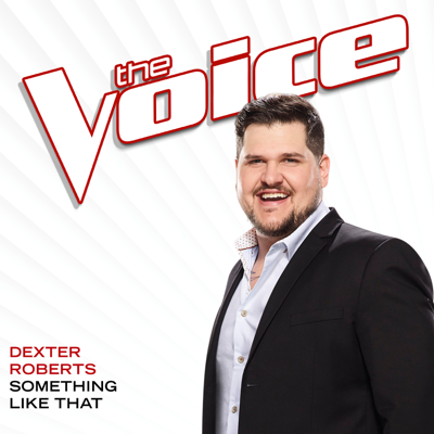 Something Like That (The Voice Performance) - Dexter Roberts song