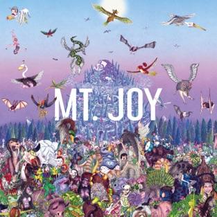 Mt. Joy – Rearrange Us [iTunes Plus AAC M4A]
