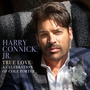 Just One of Those Things - Harry Connick, Jr. - Harry Connick, Jr.