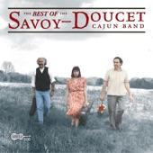 Savoy-Doucet Cajun Band - 'tits Yeux Noirs