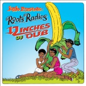 Roots Radics - Dub In Flames
