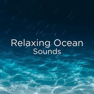 Ocean Sounds & Ocean Waves For Sleep - !!#01 Relaxing Ocean Sounds