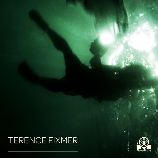 The Swarm - EP by Terence Fixmer